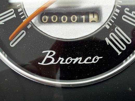 """""""Bronco"""" Vinyl Decal Image"""